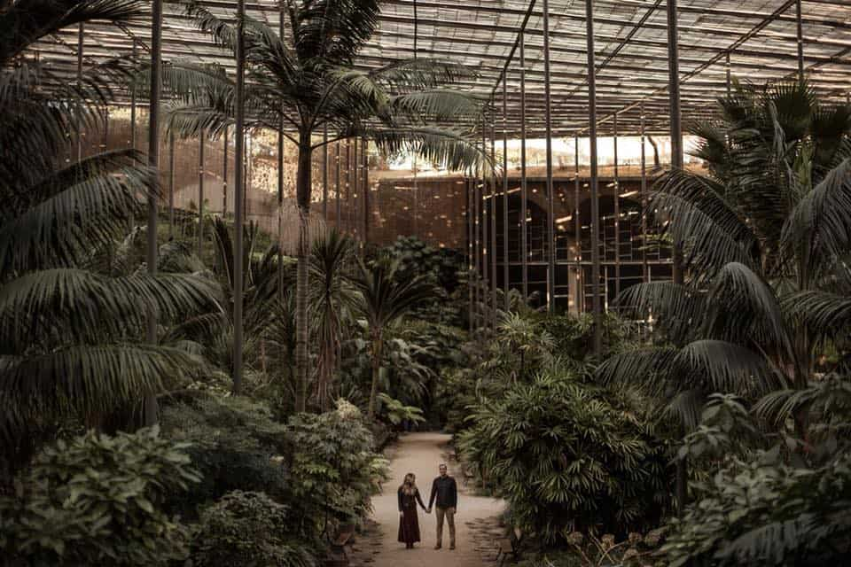 man and a woman holding hands in a greenhouse