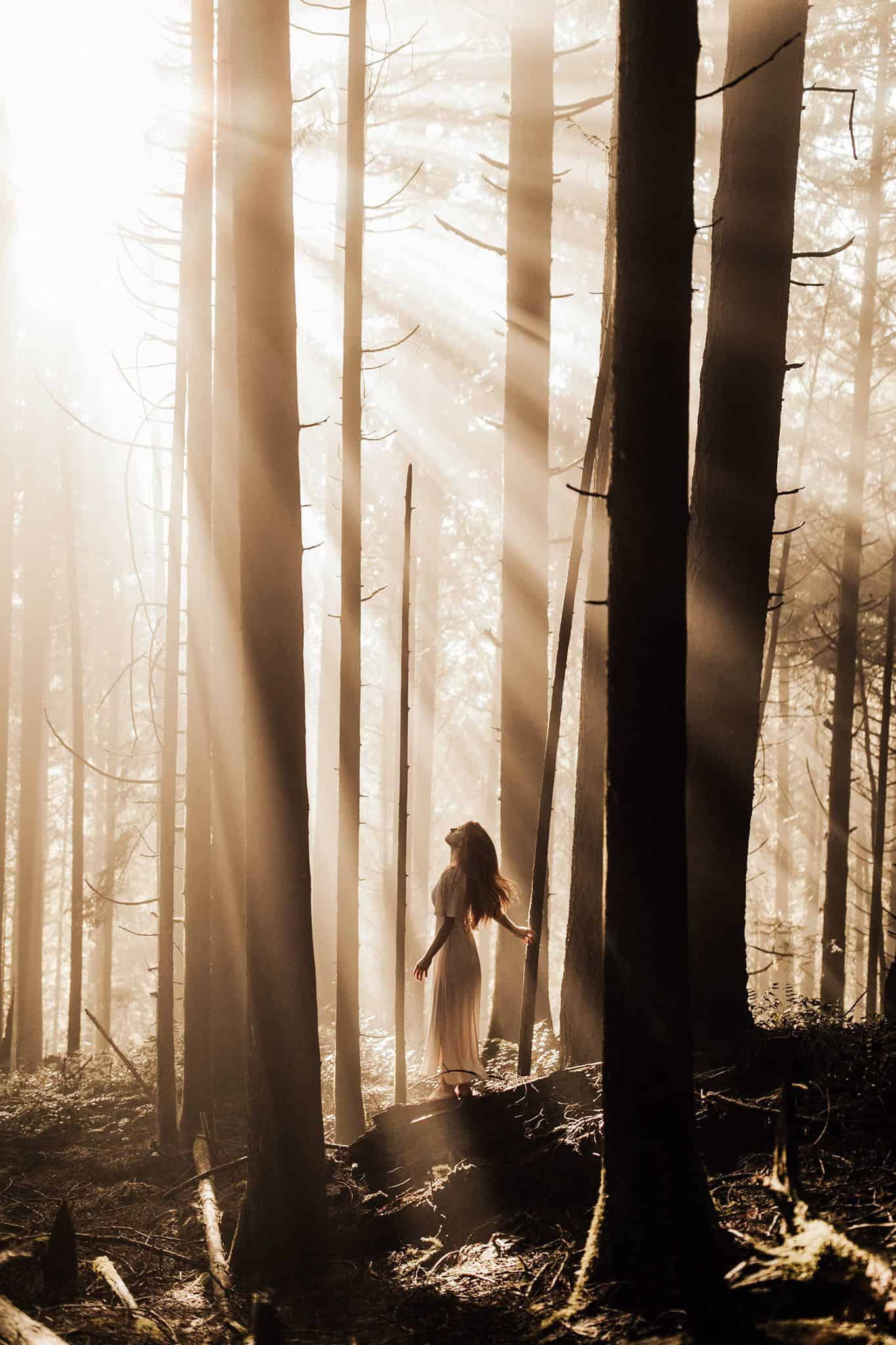 Sunbeams breaking through the trees in a forest and a person enjoy it