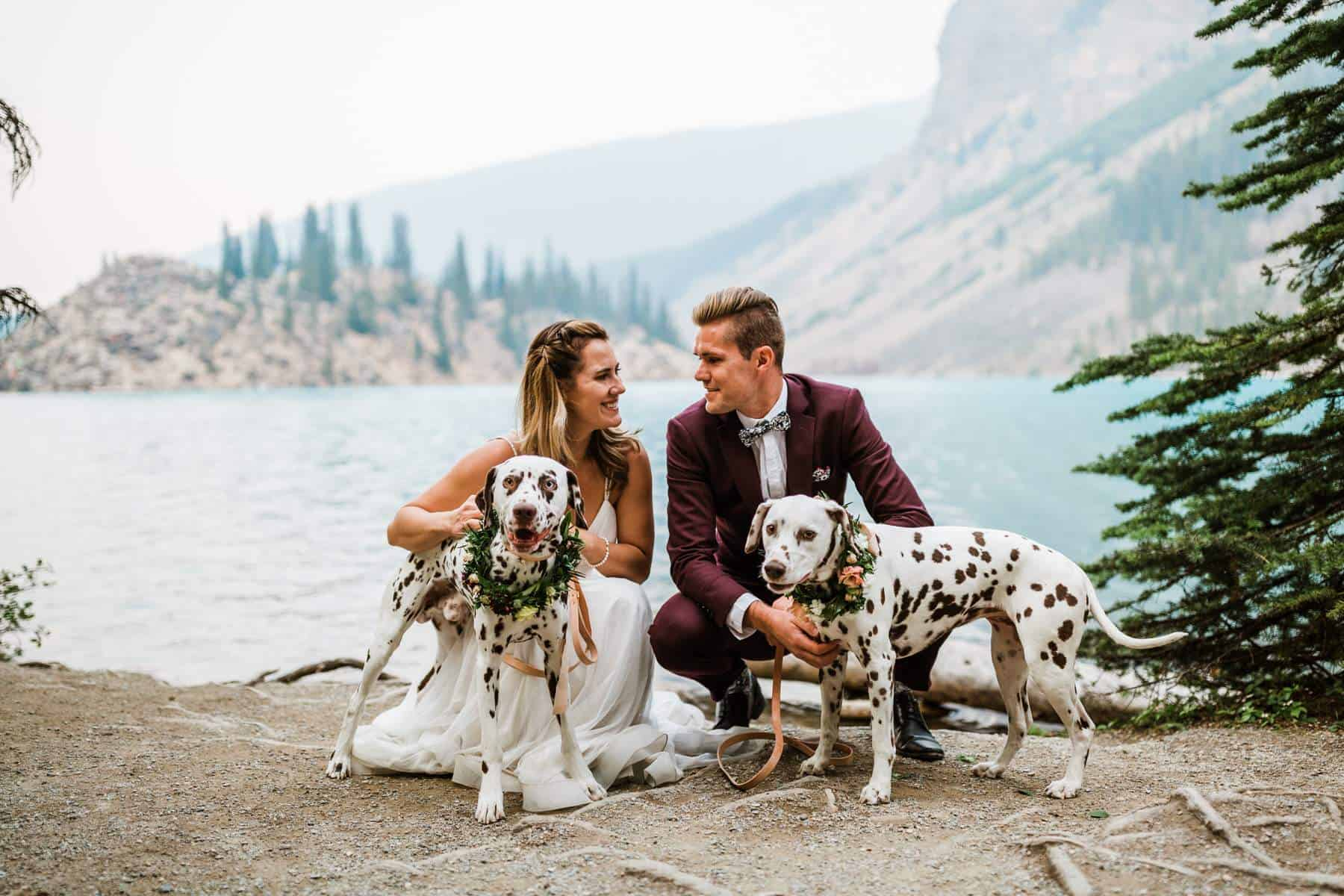 Bride and groom look at each other and pose for the photo with their dalmatians
