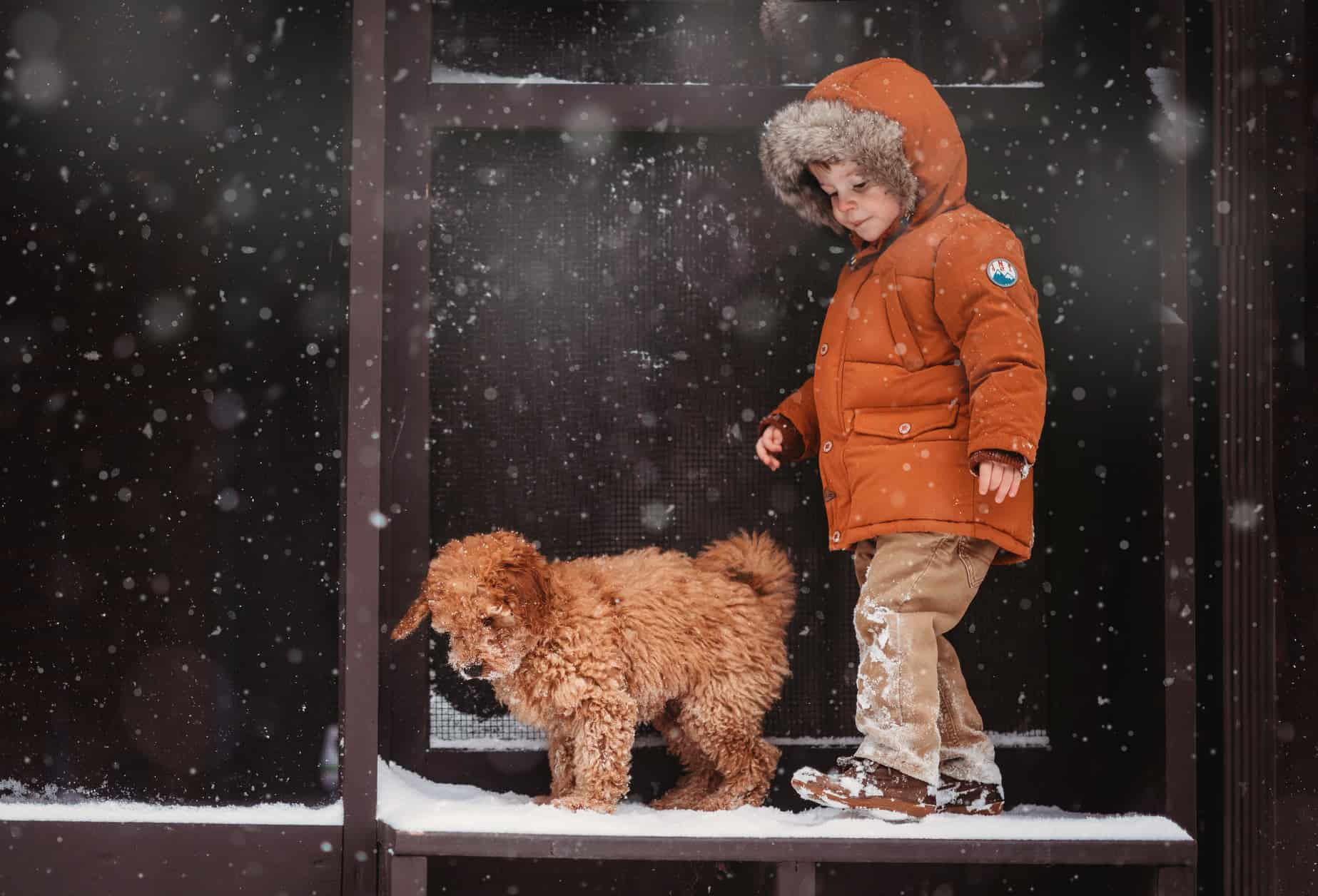 Amazing Snow Photos That Show The Magic Of Winter Season