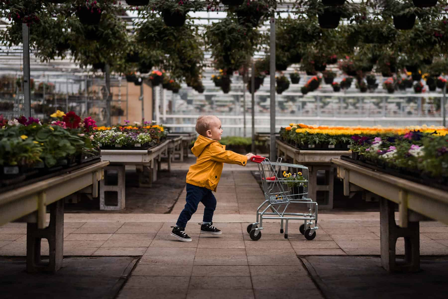 Small Kid pulling a tiny shopping cart in a flower shop