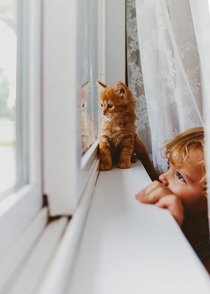 A small kid looking out the window with his tiny cat