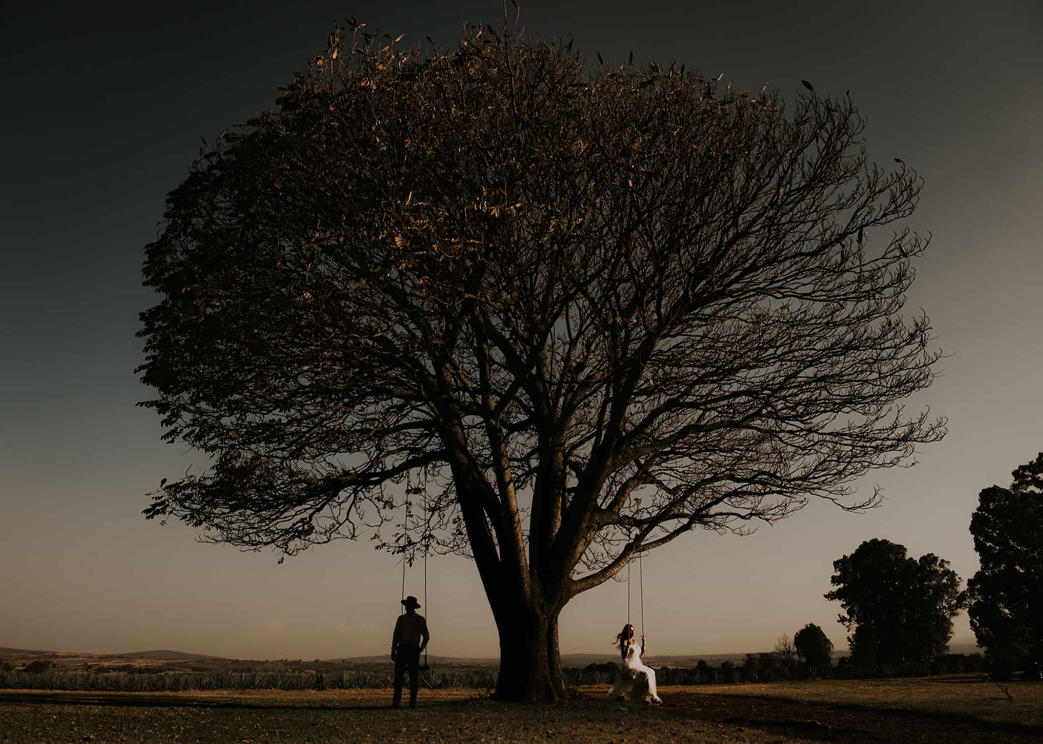 Artistic Wedding Image of a couple swinging from a tree at sunset