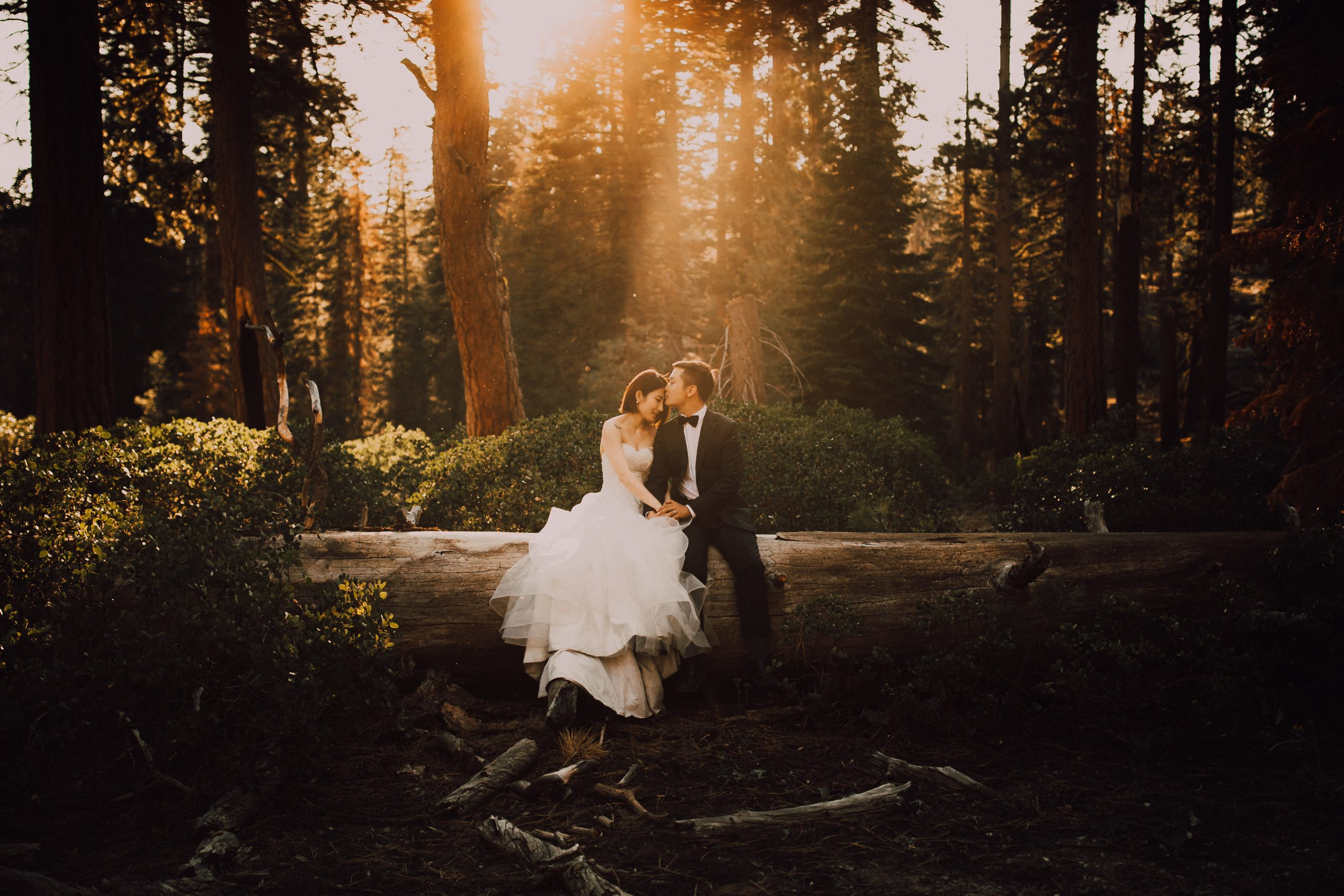 Lightroom Presets for Elopement Photographers - C & A Presets by Cody & Allison