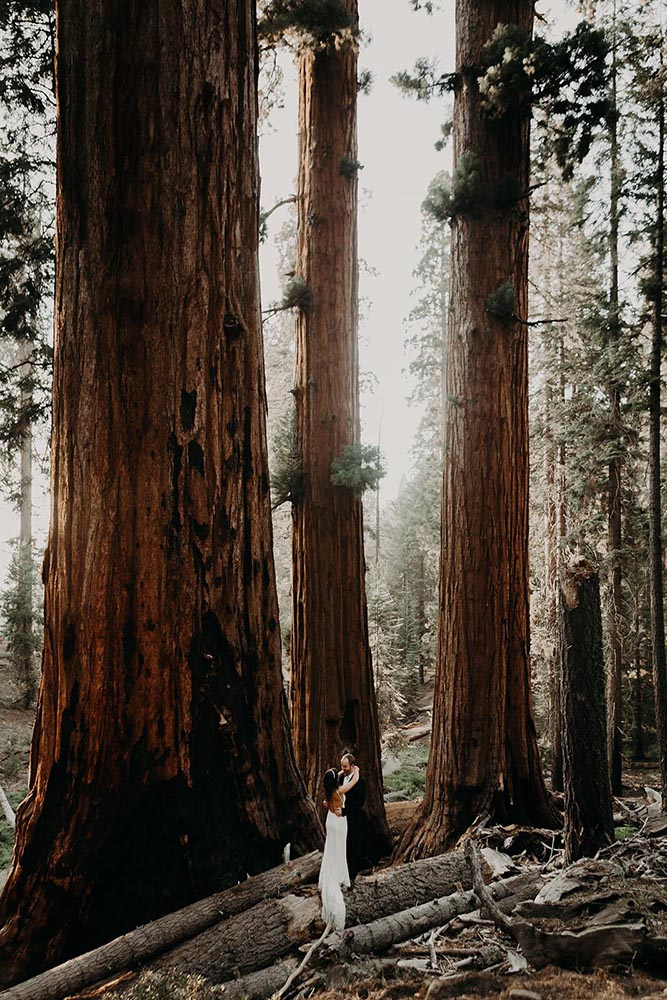 Elopement at Sequoia National Park