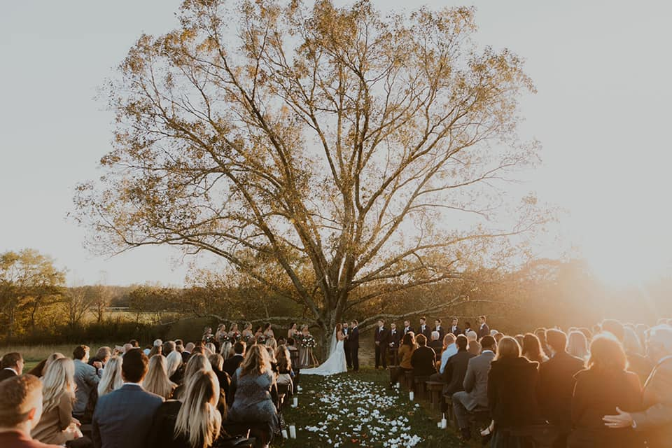 A wedding couple is standing in front of a big tree and in front of them, to the right and left, are their guests sitting
