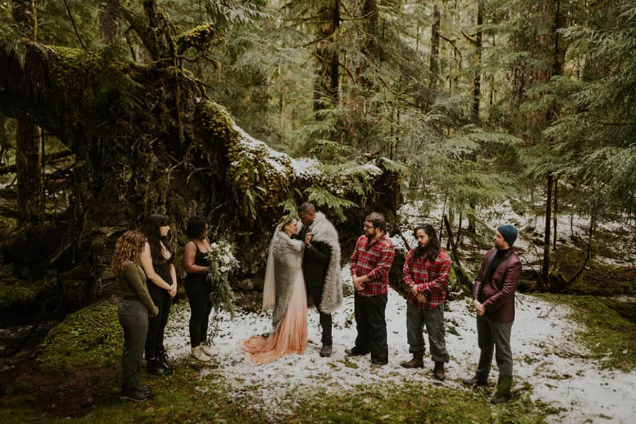 A wedding couple and their bridesmaids and groomsmen are standing in the Mount Rainer National Park.