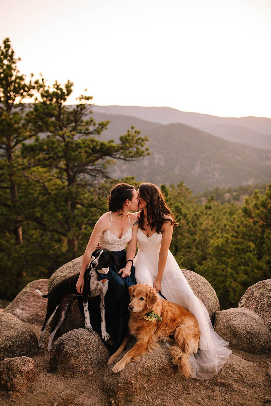 A wedding couple, two brides, are kissing each other and are sitting on rocks with two dogs on front of them in the Flagstaff Mountains.
