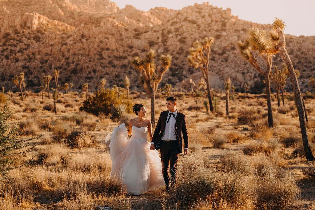 A wedding couple is walking through a dry meadow.