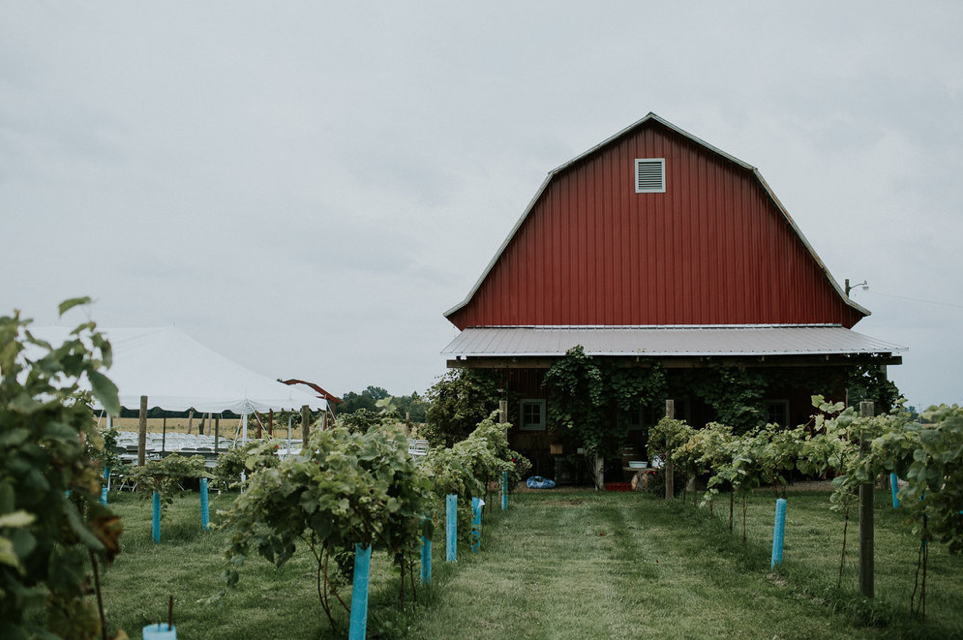 The Vineyard at Porter Central is located in Sunbury, Ohio