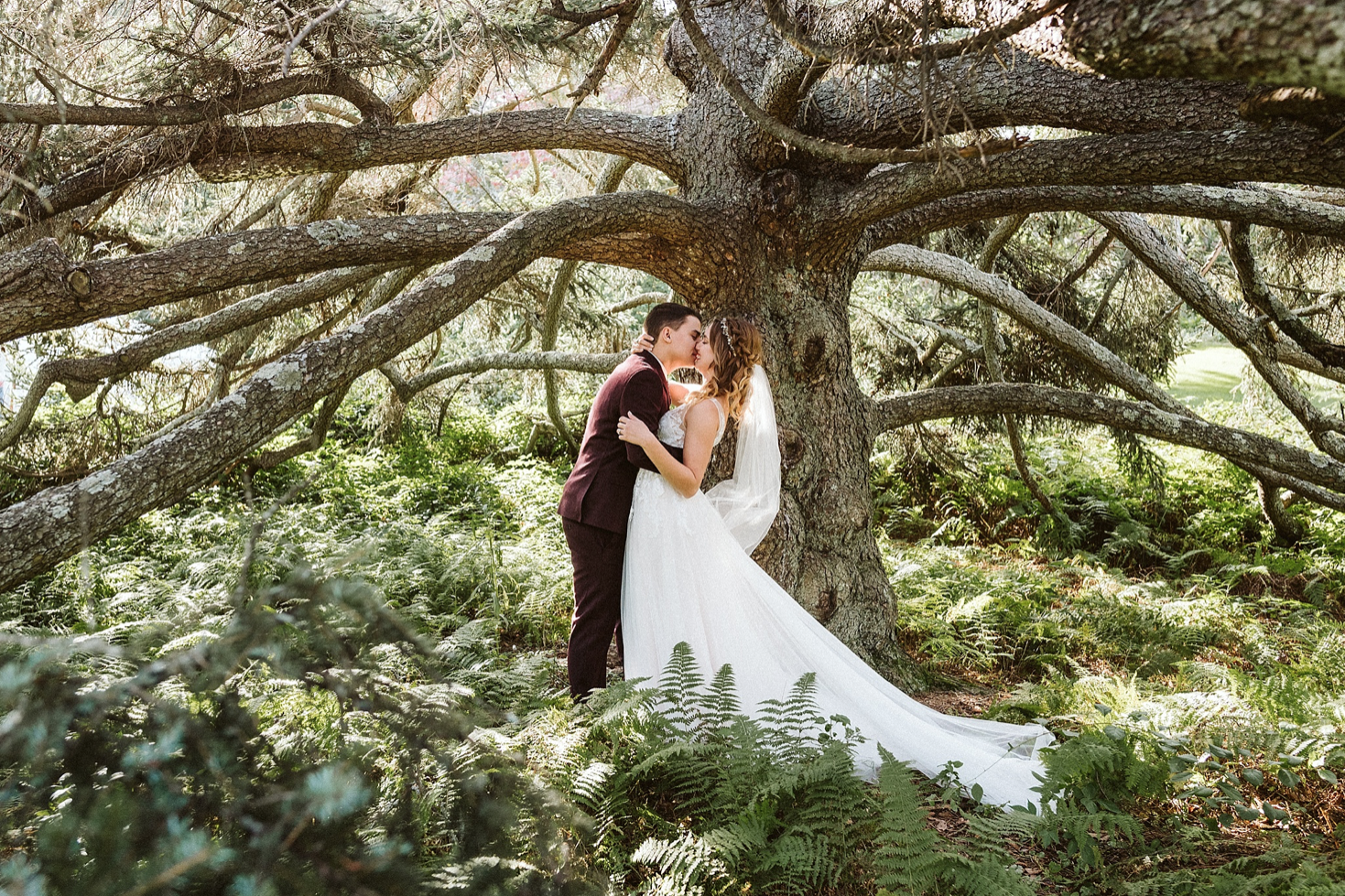 A wedding couple is kissing each other under a tree at the Moraine Farm., one of the wedding venues in Massachusetts.